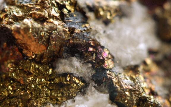 由于生产强劲和金价上涨,哈莫尼黄金的EBITDA提高了360%